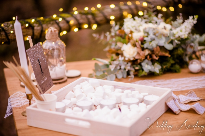 Formation Wedding Planner-Wedding Academy- Shooting d'inspiration Hivernal (100)