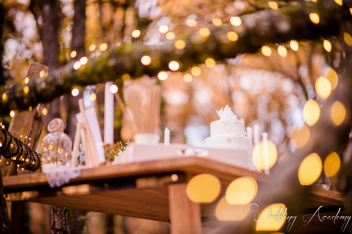 Formation Wedding Planner-Wedding Academy- Shooting d'inspiration Hivernal (114)