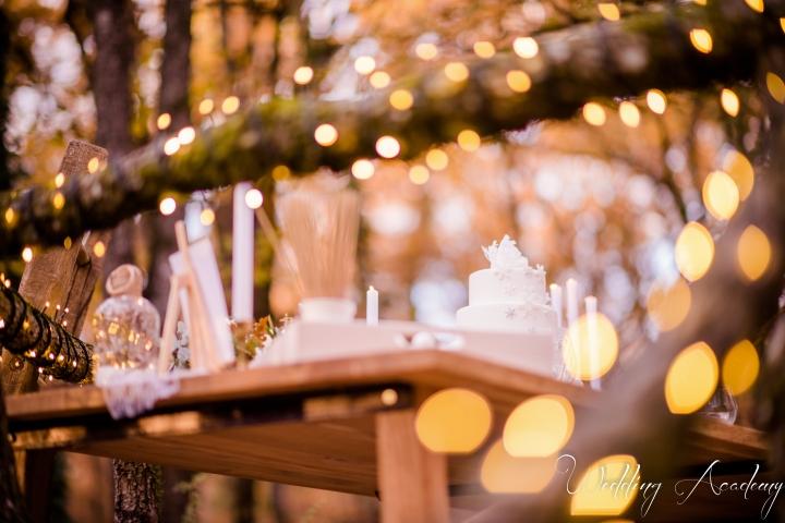 Formation Wedding Planner-Wedding Academy- Shooting d'inspiration Hivernal (114)