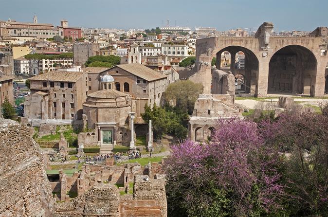 visite-priv-e-le-mont-palatin-de-rome-incluant-la-domus-augustana-in-rome-207573